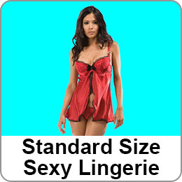 STANDARD SIZE SEXY LINGERIE